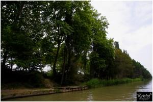Proche de Carcassonne (11)
