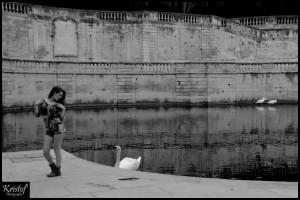 Jardin de la Fontaine (Nîmes/30)