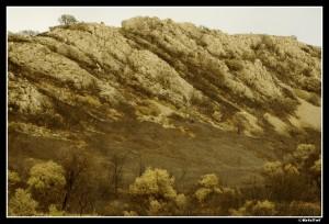 Dans l'Aude (11)